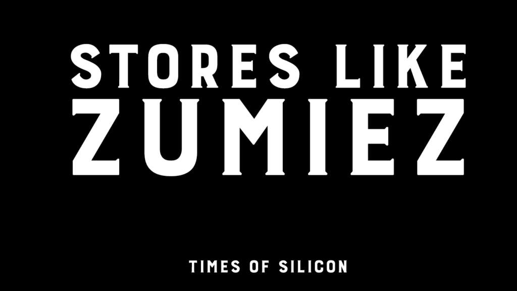Top 10 Clothing Stores Like Zumiez